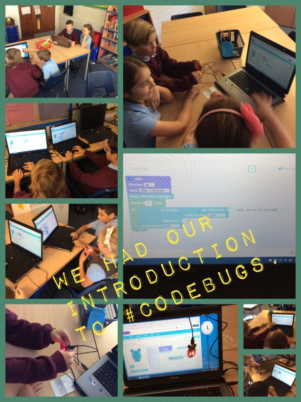Year 5 Codebugs